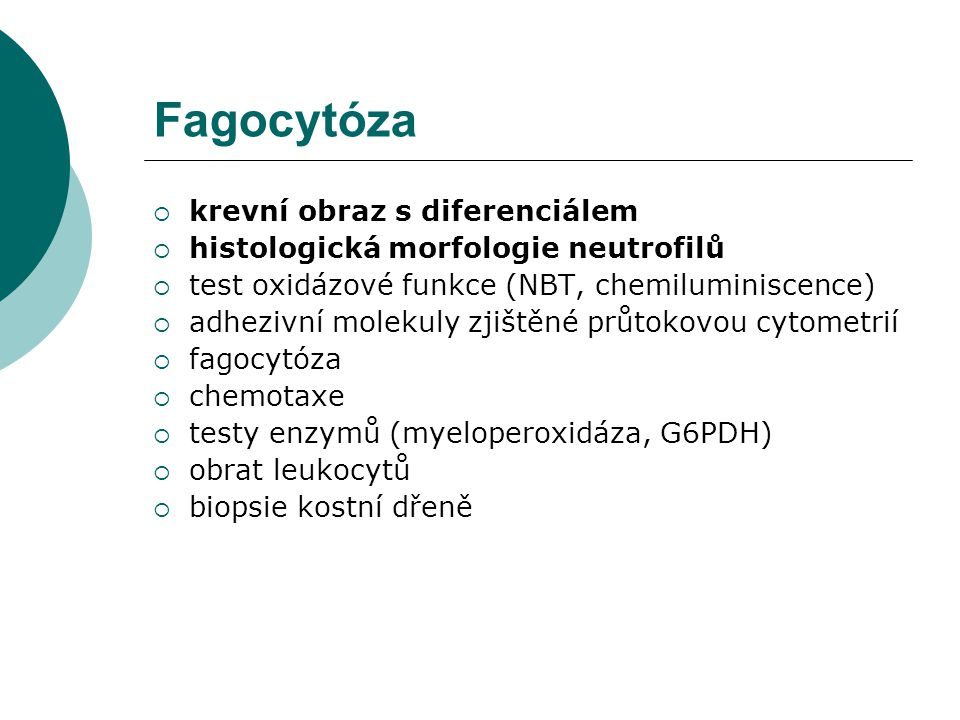 Fagocytóza krevní obraz s diferenciálem