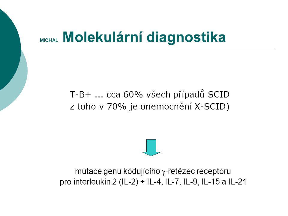 MICHAL Molekulární diagnostika
