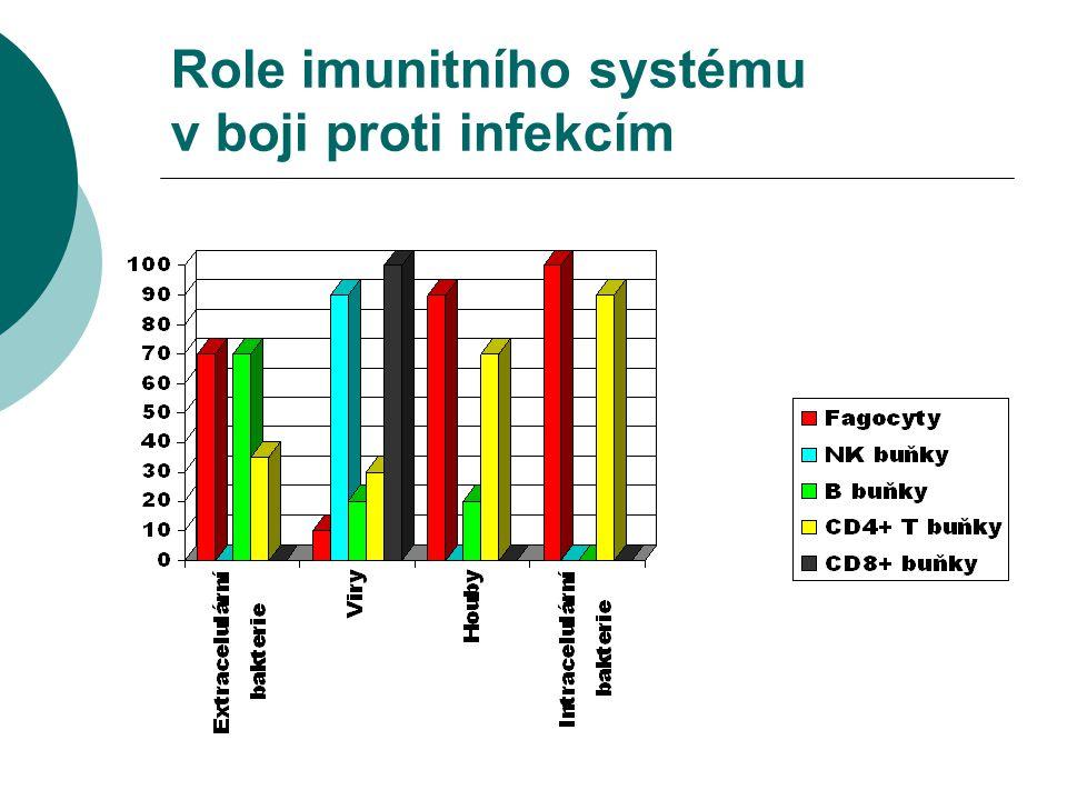 Role imunitního systému v boji proti infekcím