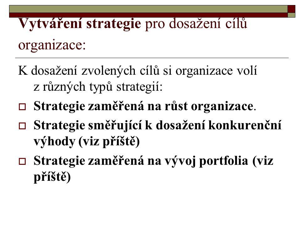 Vytváření strategie pro dosažení cílů organizace: