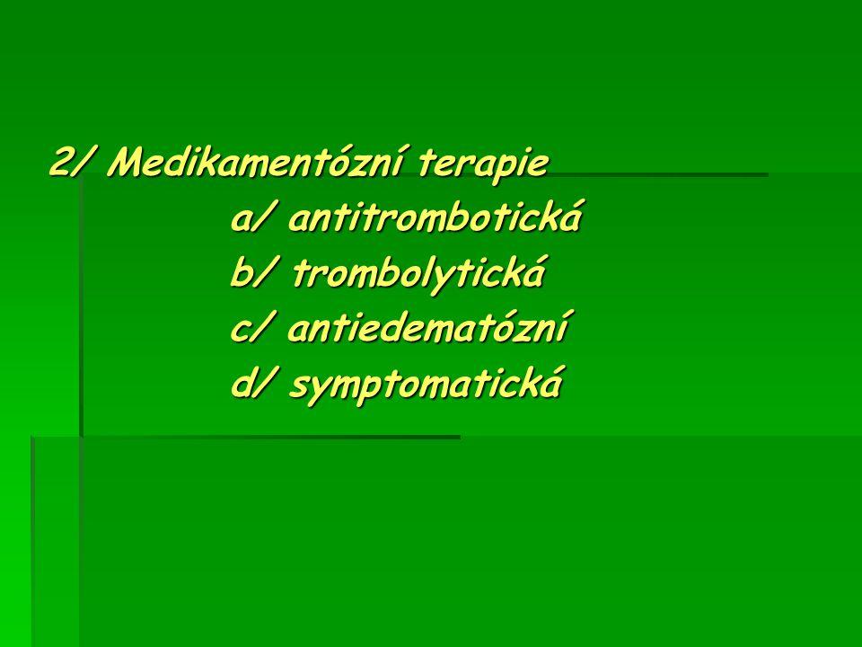 2/ Medikamentózní terapie