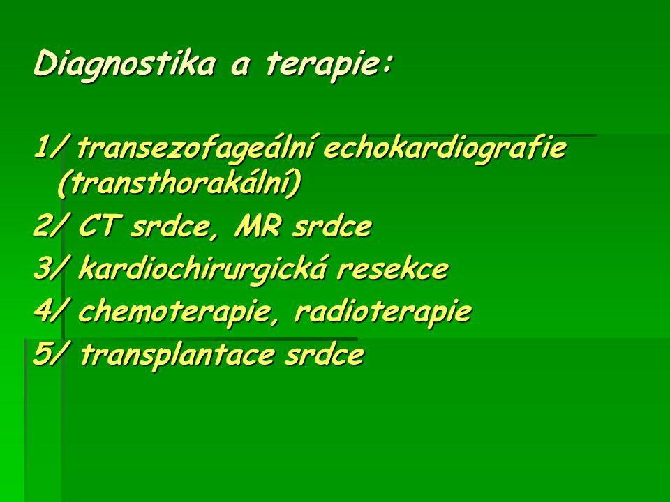 Diagnostika a terapie: