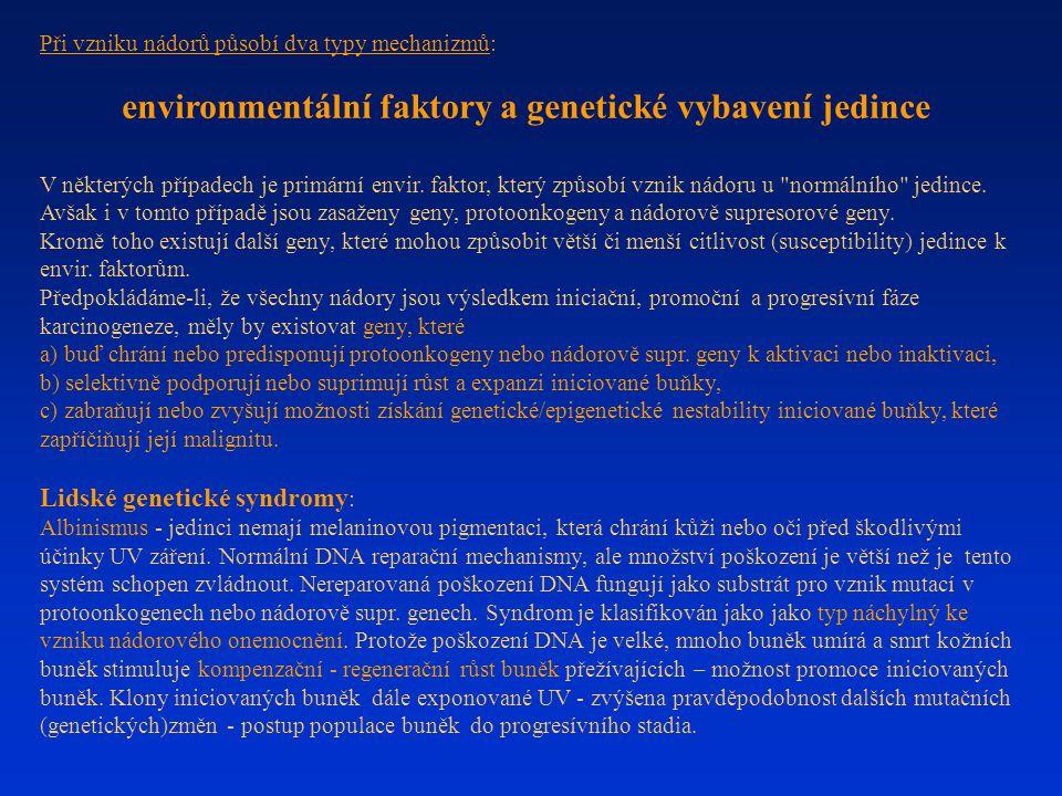 environmentální faktory a genetické vybavení jedince