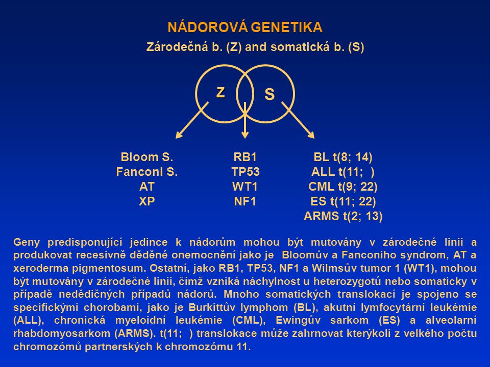 S NÁDOROVÁ GENETIKA Z Zárodečná b. (Z) and somatická b. (S)