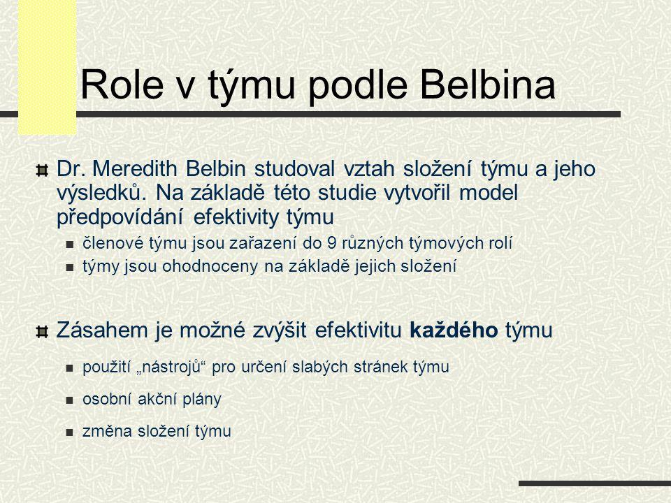 Role v týmu podle Belbina
