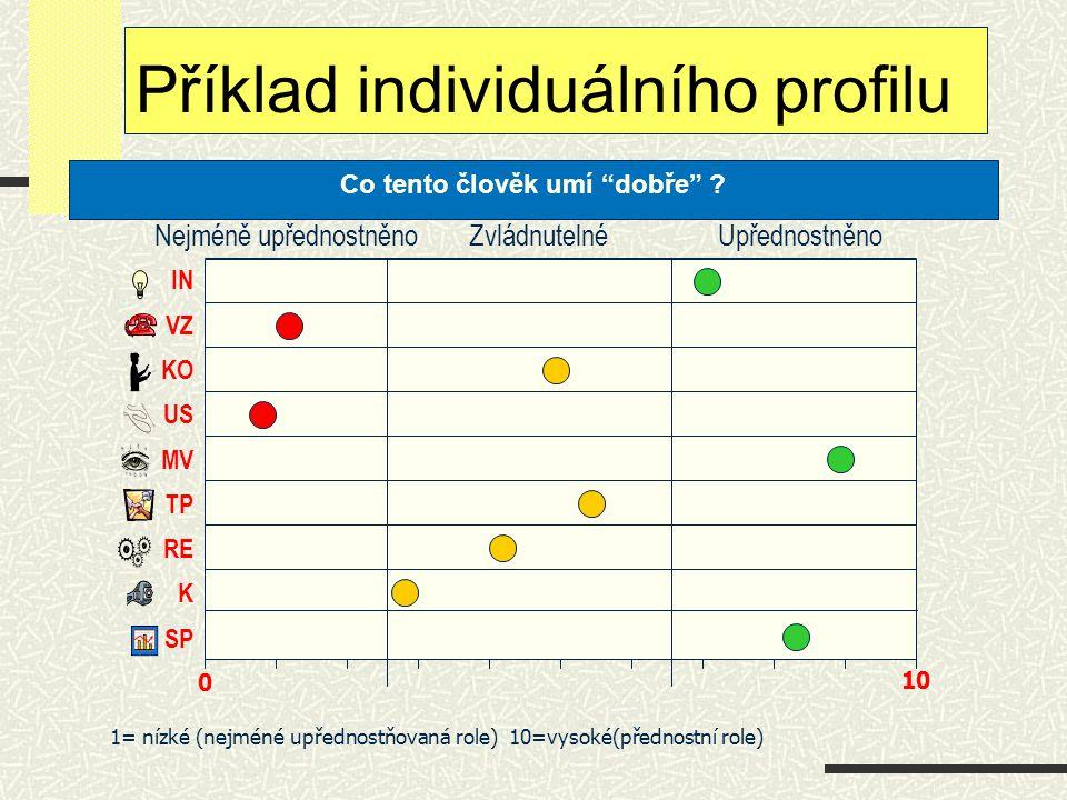 Příklad individuálního profilu