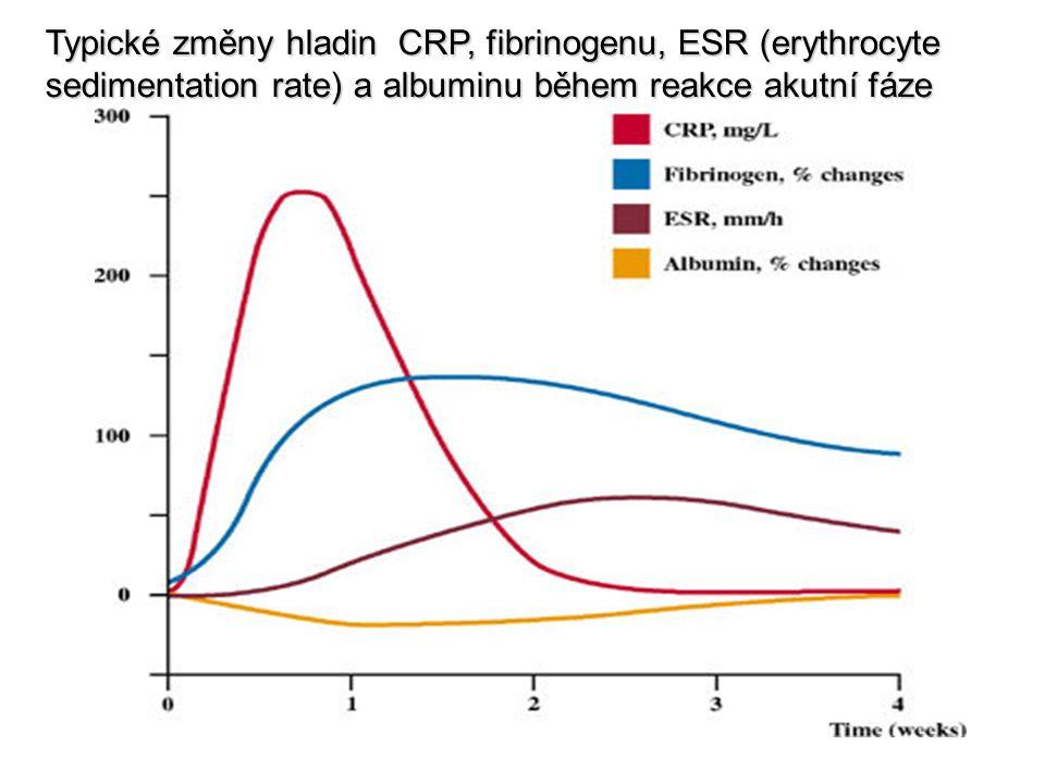 Typické změny hladin CRP, fibrinogenu, ESR (erythrocyte sedimentation rate) a albuminu během reakce akutní fáze