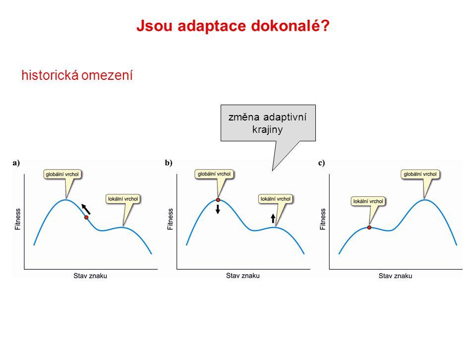 změna adaptivní krajiny