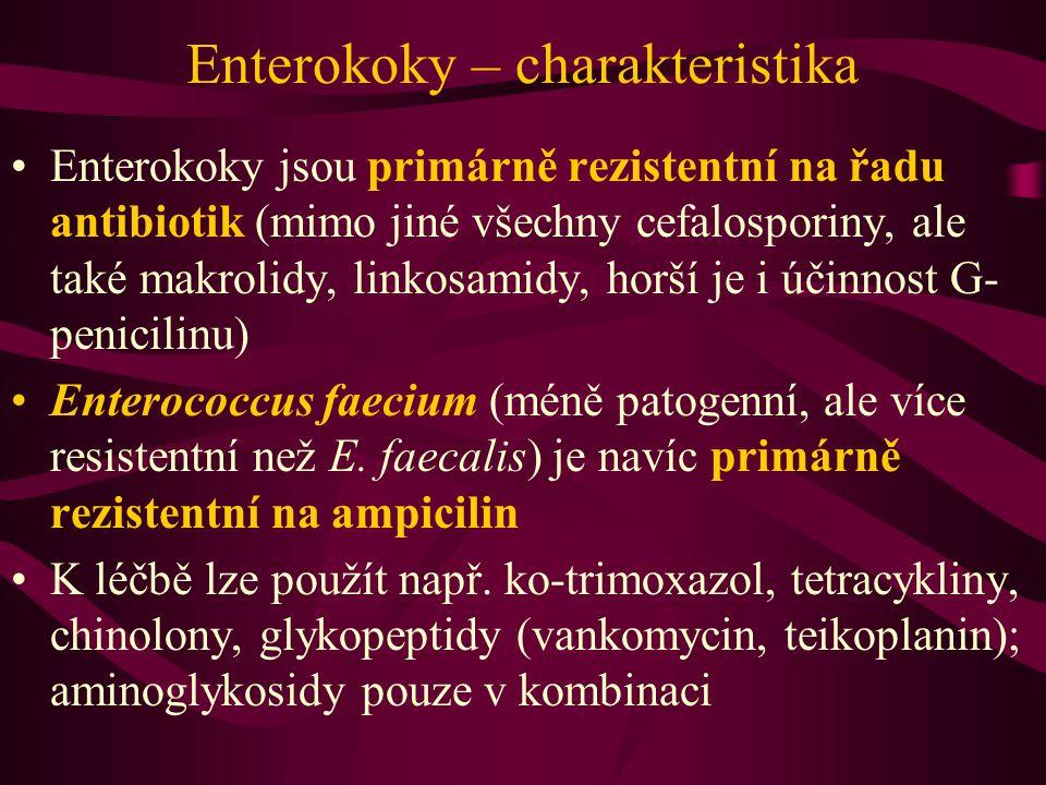 Enterokoky – charakteristika