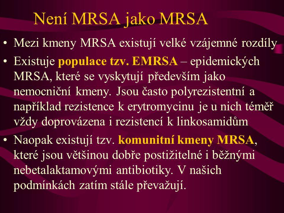 Není MRSA jako MRSA Mezi kmeny MRSA existují velké vzájemné rozdíly