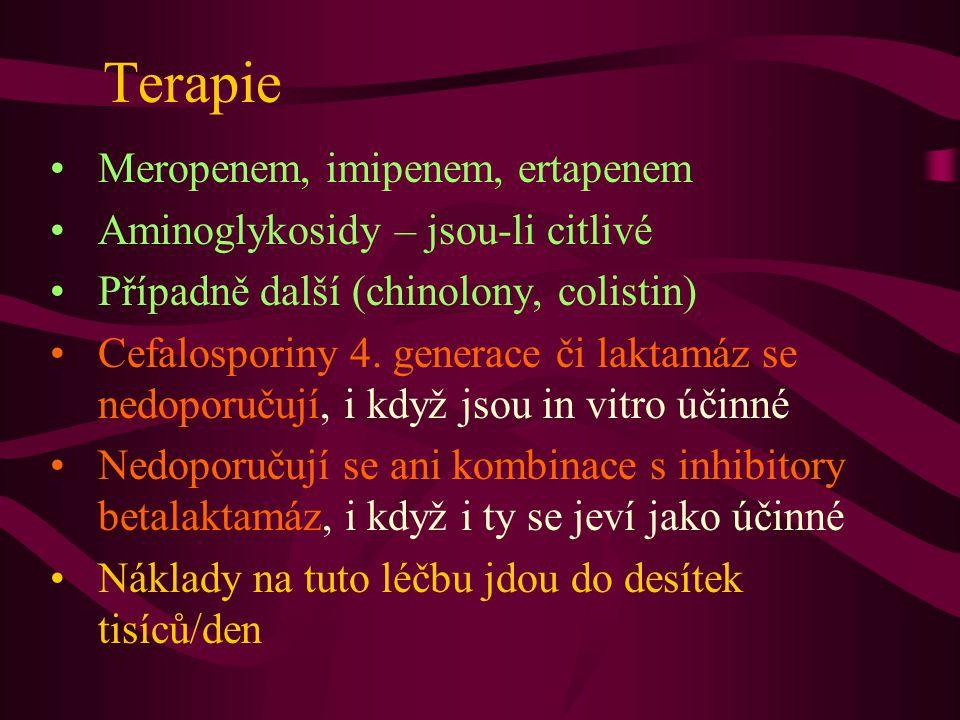 Terapie Meropenem, imipenem, ertapenem