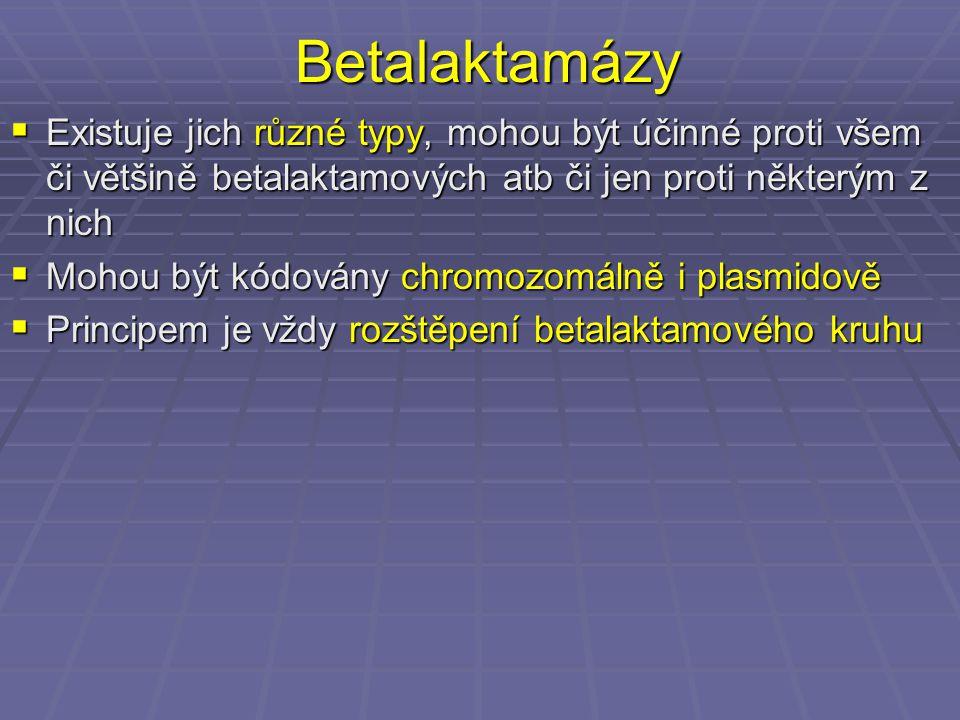 Betalaktamázy Existuje jich různé typy, mohou být účinné proti všem či většině betalaktamových atb či jen proti některým z nich.