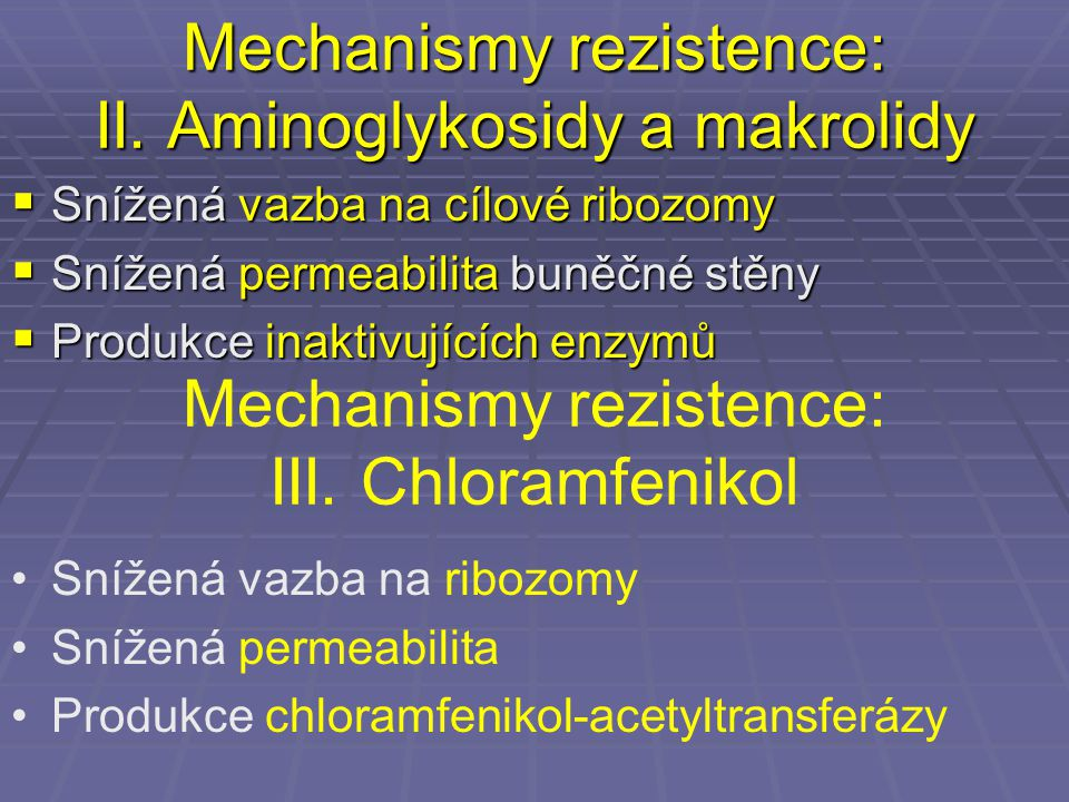 Mechanismy rezistence: II. Aminoglykosidy a makrolidy