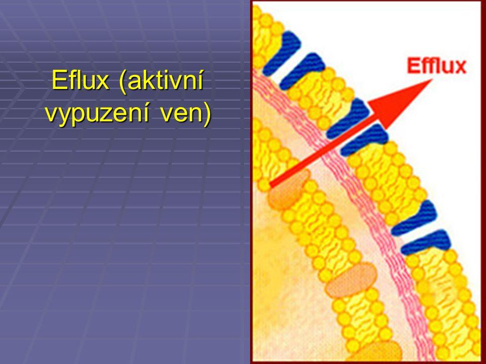 Eflux (aktivní vypuzení ven)