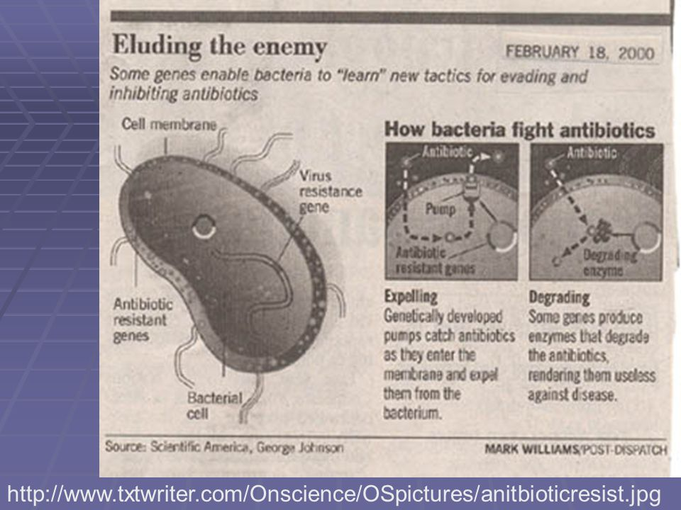 http://www.txtwriter.com/Onscience/OSpictures/anitbioticresist.jpg