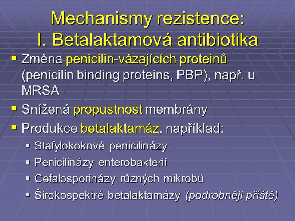 Mechanismy rezistence: I. Betalaktamová antibiotika