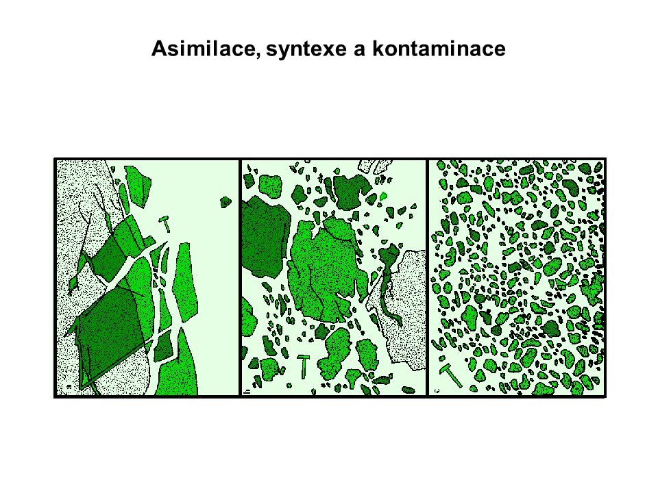 Asimilace, syntexe a kontaminace