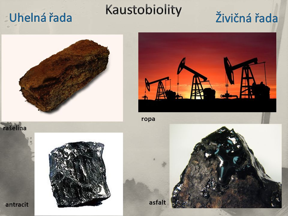 Kaustobiolity Uhelná řada Živičná řada ropa rašelina asfalt antracit