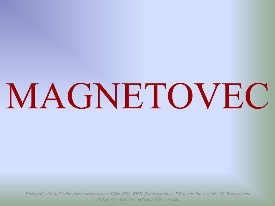 MAGNETOVEC