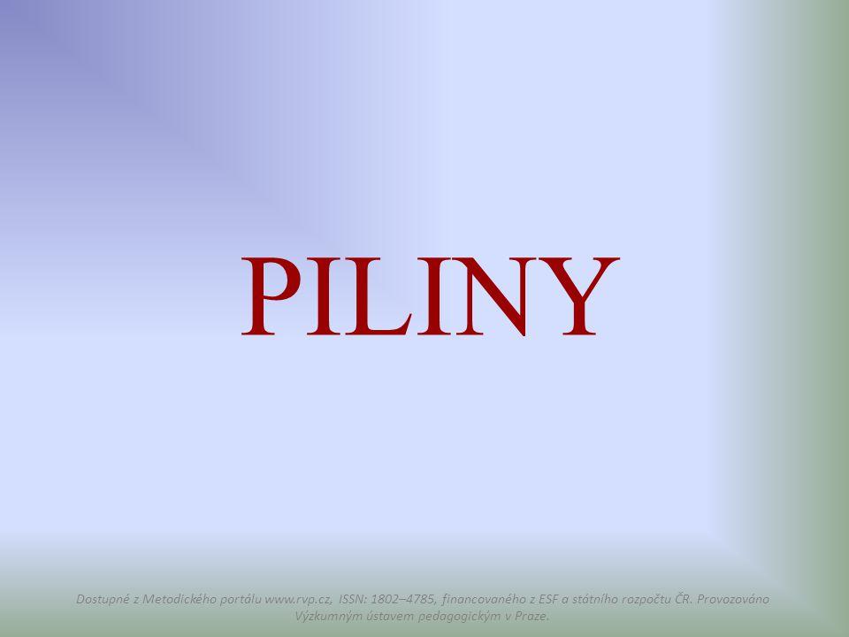 PILINY