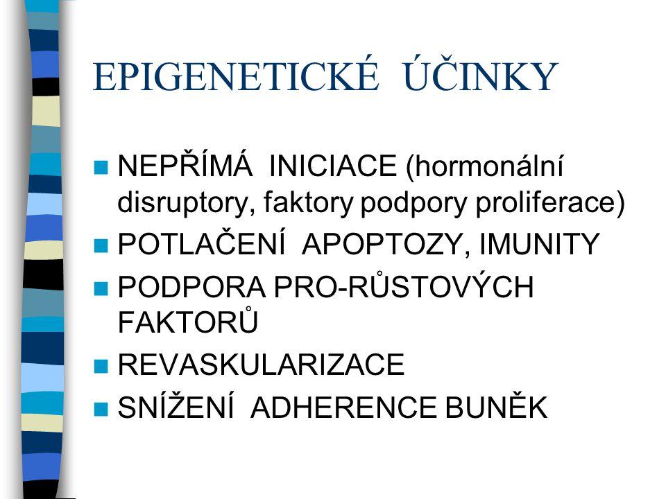 EPIGENETICKÉ ÚČINKY NEPŘÍMÁ INICIACE (hormonální disruptory, faktory podpory proliferace) POTLAČENÍ APOPTOZY, IMUNITY.