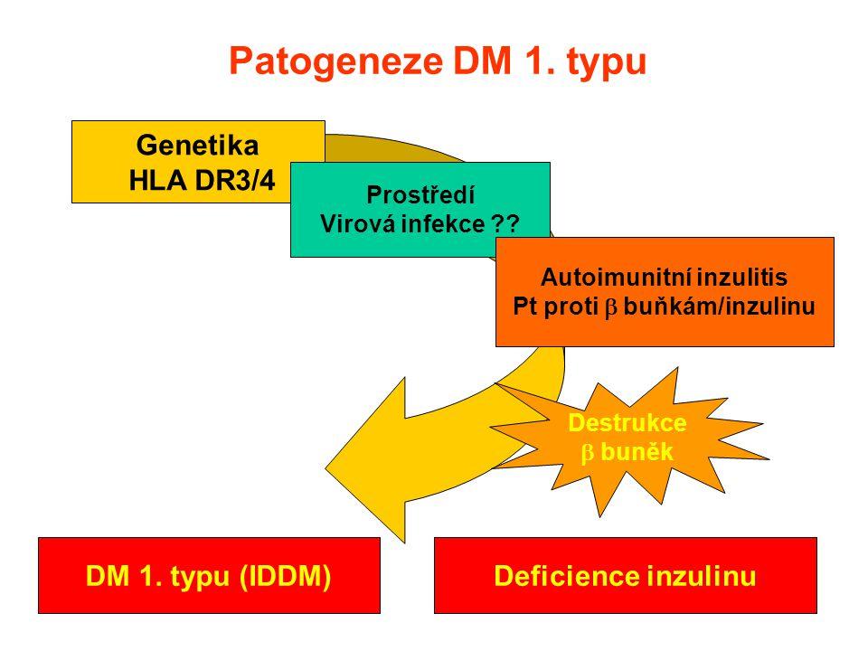 Autoimunitní inzulitis Pt proti  buňkám/inzulinu