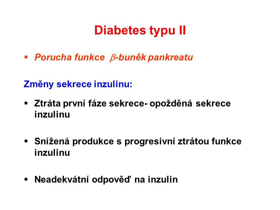 Diabetes typu II Porucha funkce -buněk pankreatu