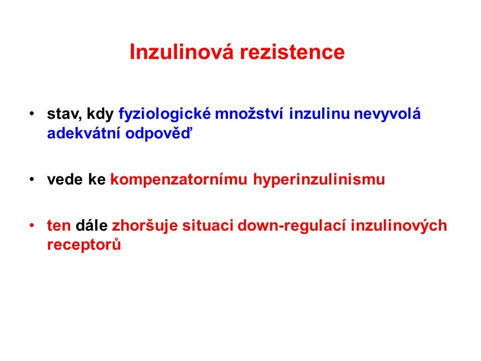 Inzulinová rezistence