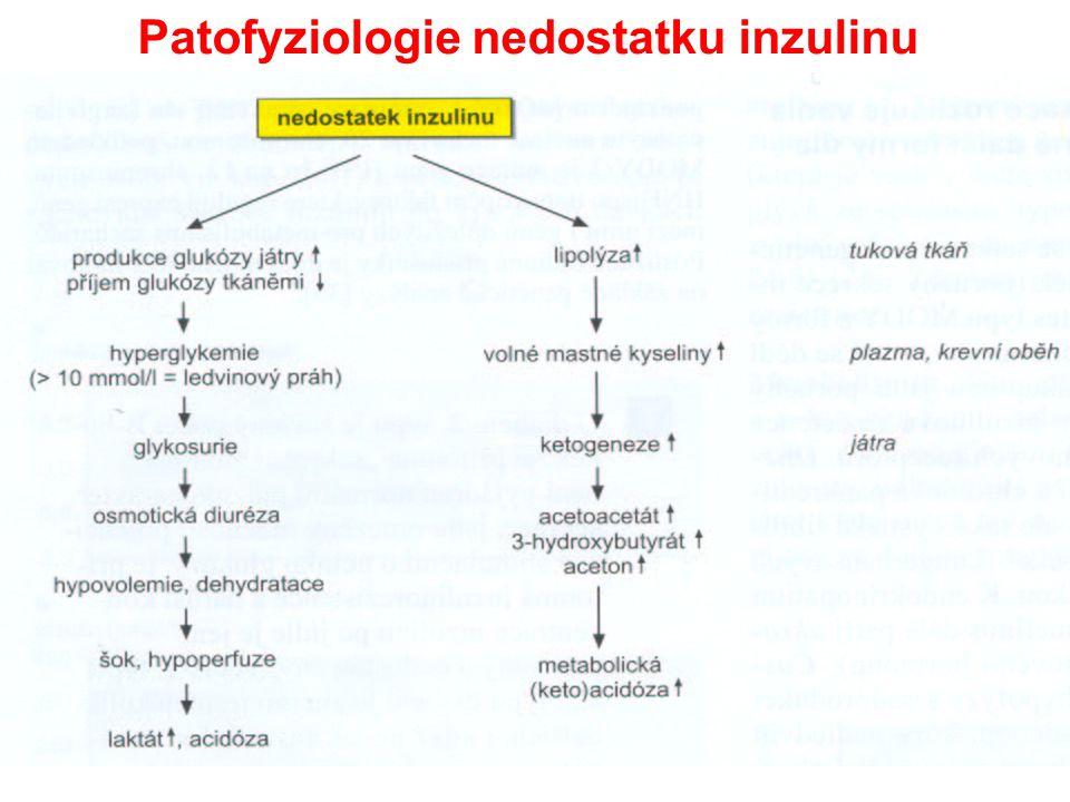 Patofyziologie nedostatku inzulinu