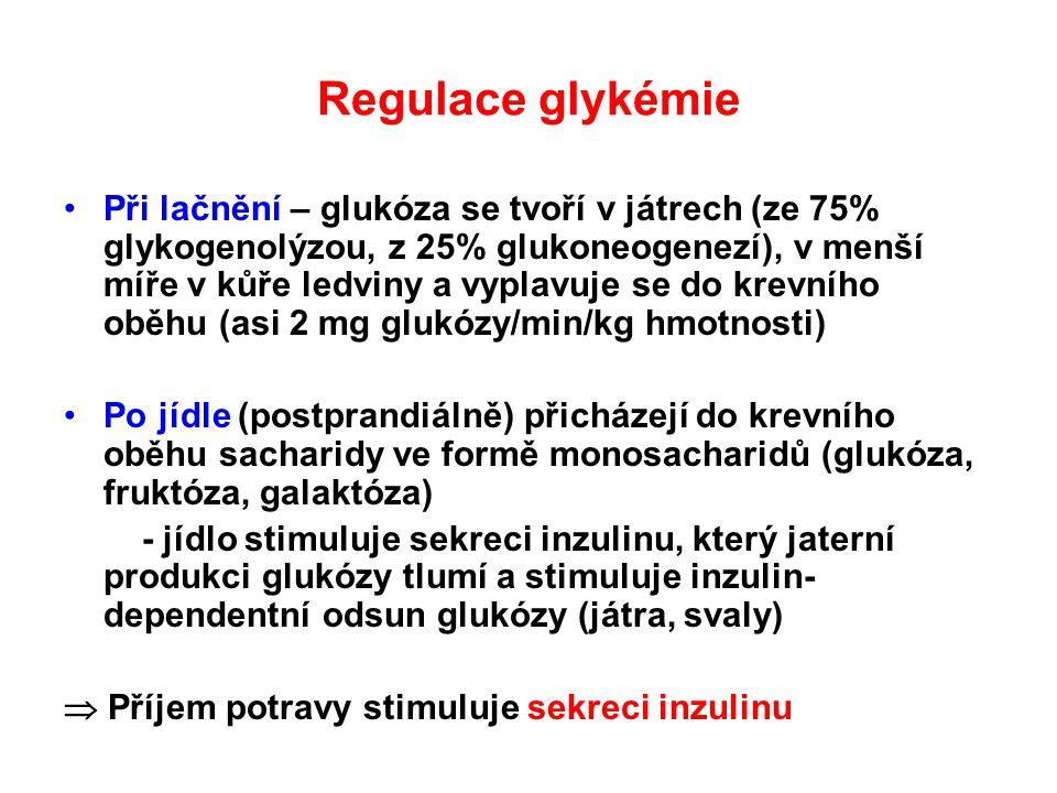 Regulace glykémie