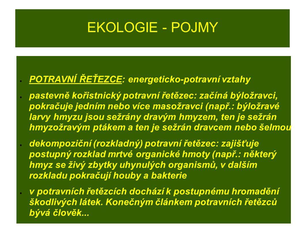 EKOLOGIE - POJMY POTRAVNÍ ŘEŤEZCE: energeticko-potravní vztahy