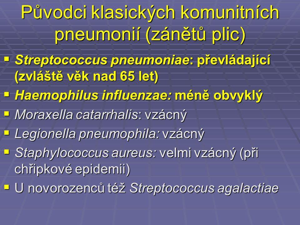 Původci klasických komunitních pneumonií (zánětů plic)