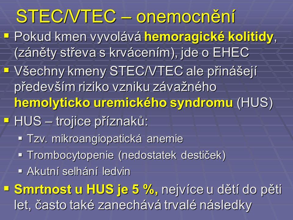 STEC/VTEC – onemocnění