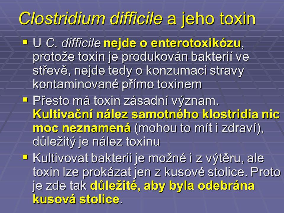 Clostridium difficile a jeho toxin
