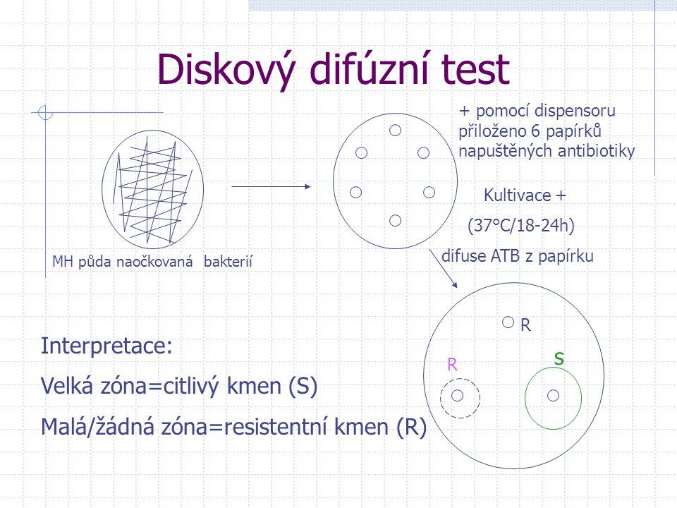 Diskový difúzní test Interpretace: Velká zóna=citlivý kmen (S) s