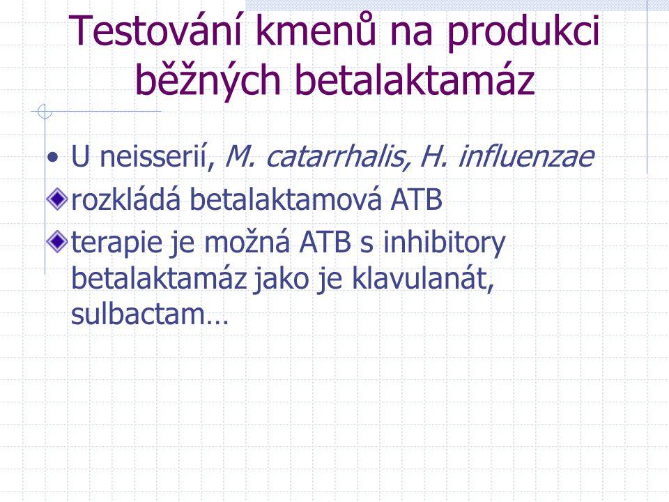 Testování kmenů na produkci běžných betalaktamáz