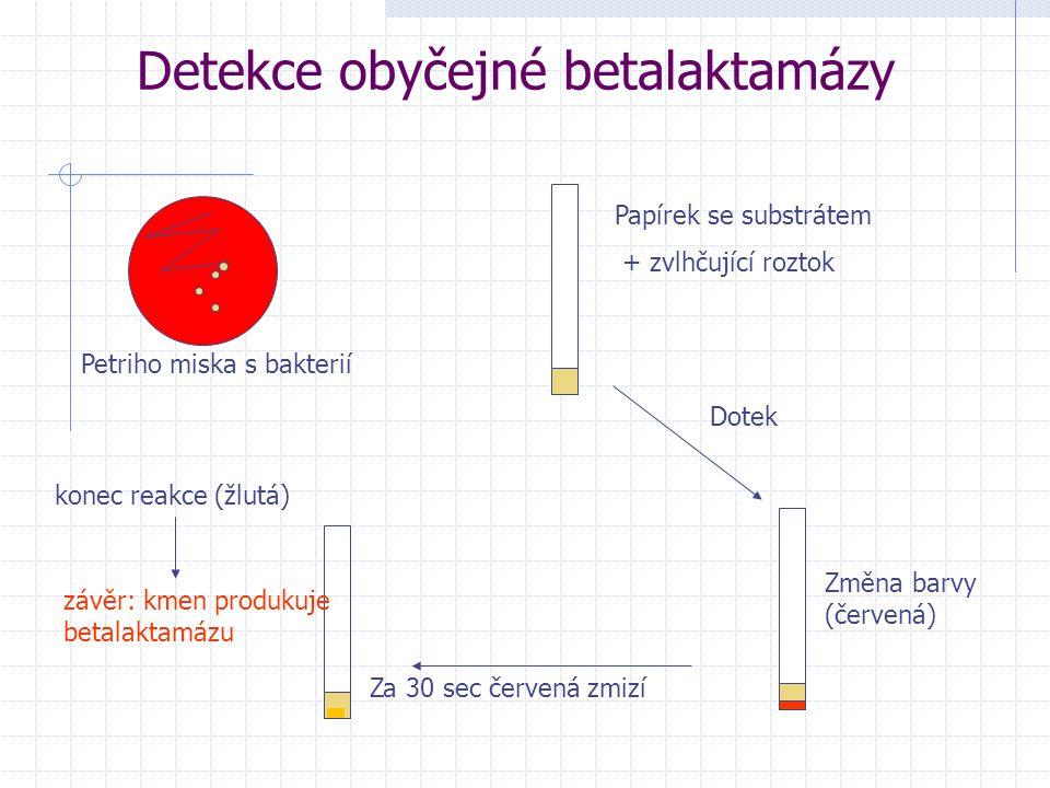 Detekce obyčejné betalaktamázy