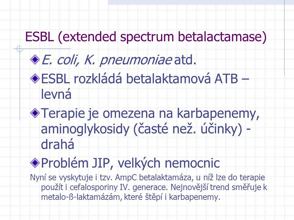 ESBL (extended spectrum betalactamase)