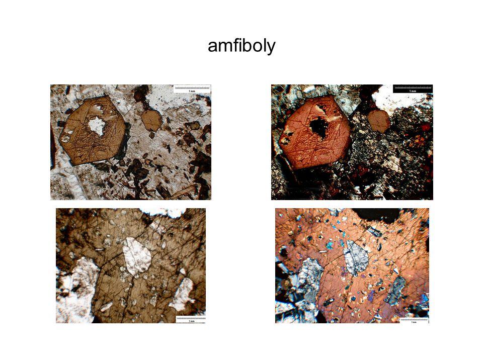 amfiboly