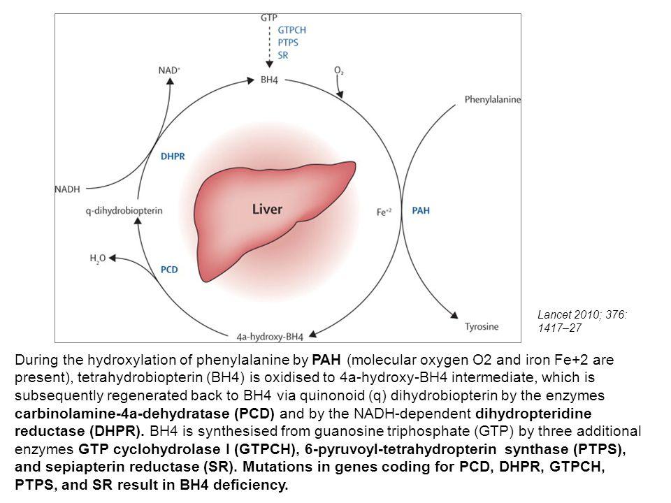 Lancet 2010; 376: 1417–27