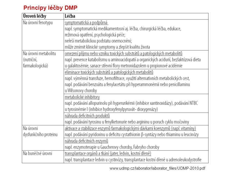 Principy léčby DMP www.udmp.cz/laborator/laborator_files/UDMP-2010.pdf