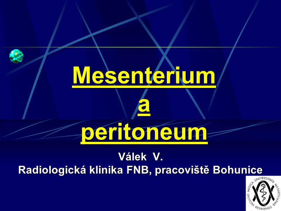 Mesenterium a peritoneum