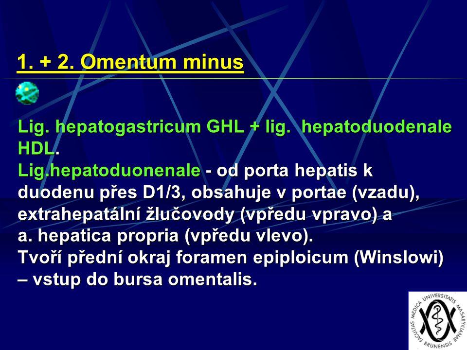 1. + 2. Omentum minus Lig. hepatogastricum GHL + lig. hepatoduodenale HDL.