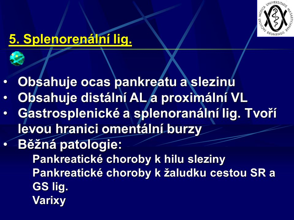 Obsahuje ocas pankreatu a slezinu Obsahuje distální AL a proximální VL