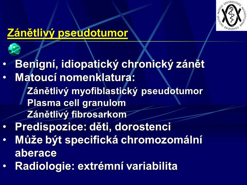 Zánětlivý pseudotumor