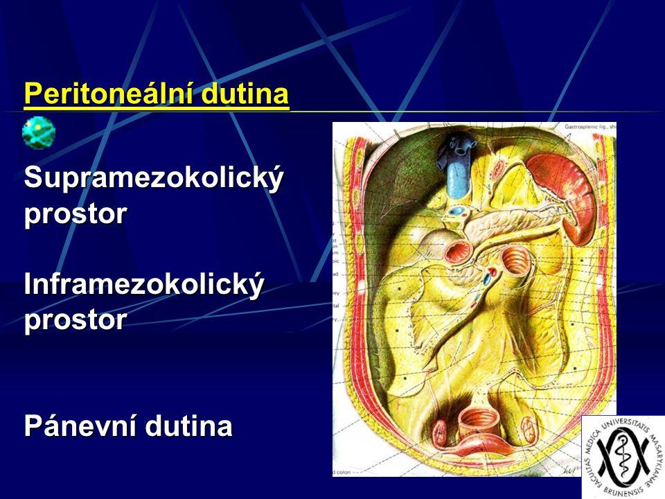 Peritoneální dutina Supramezokolický prostor Inframezokolický prostor Pánevní dutina
