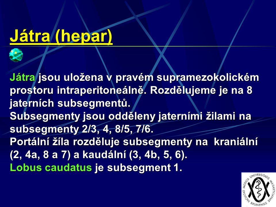Játra (hepar) Játra jsou uložena v pravém supramezokolickém prostoru intraperitoneálně. Rozdělujeme je na 8 jaterních subsegmentů.