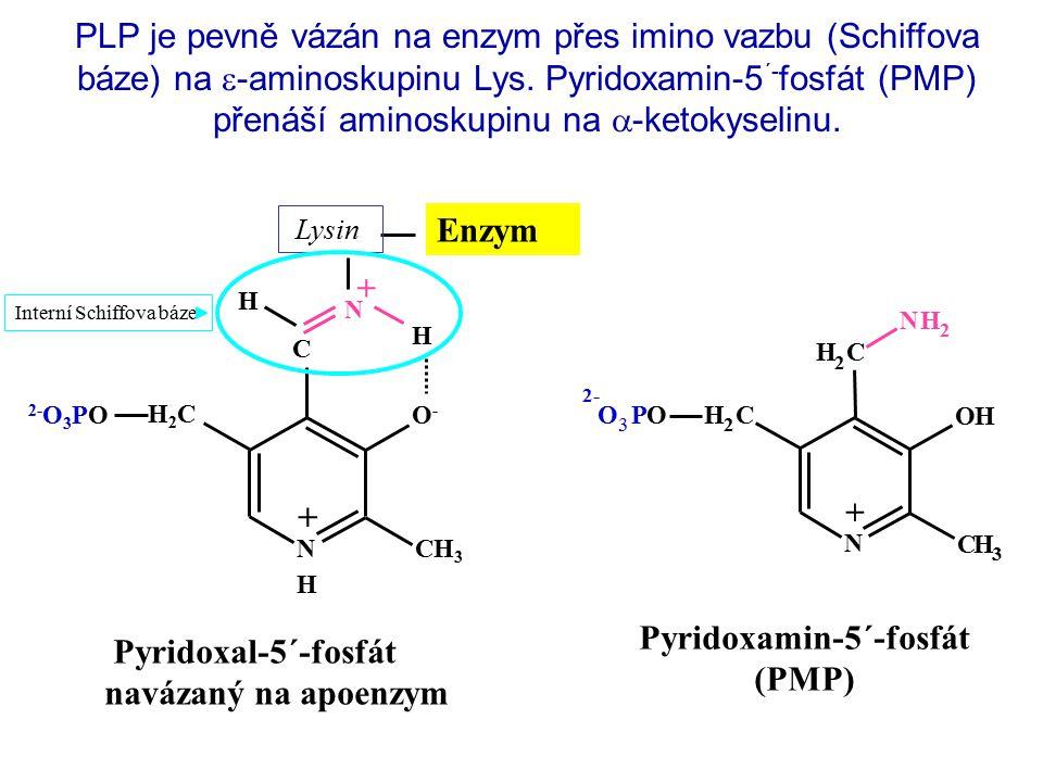 Pyridoxamin-5´-fosfát