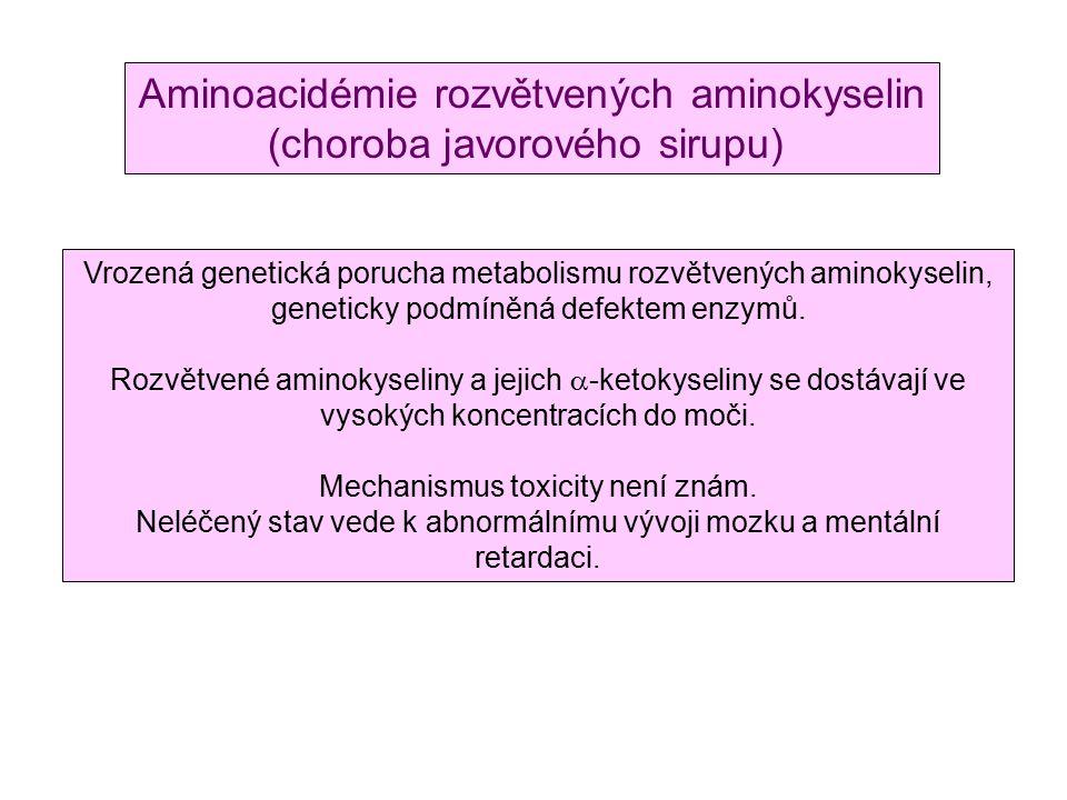 Aminoacidémie rozvětvených aminokyselin (choroba javorového sirupu)