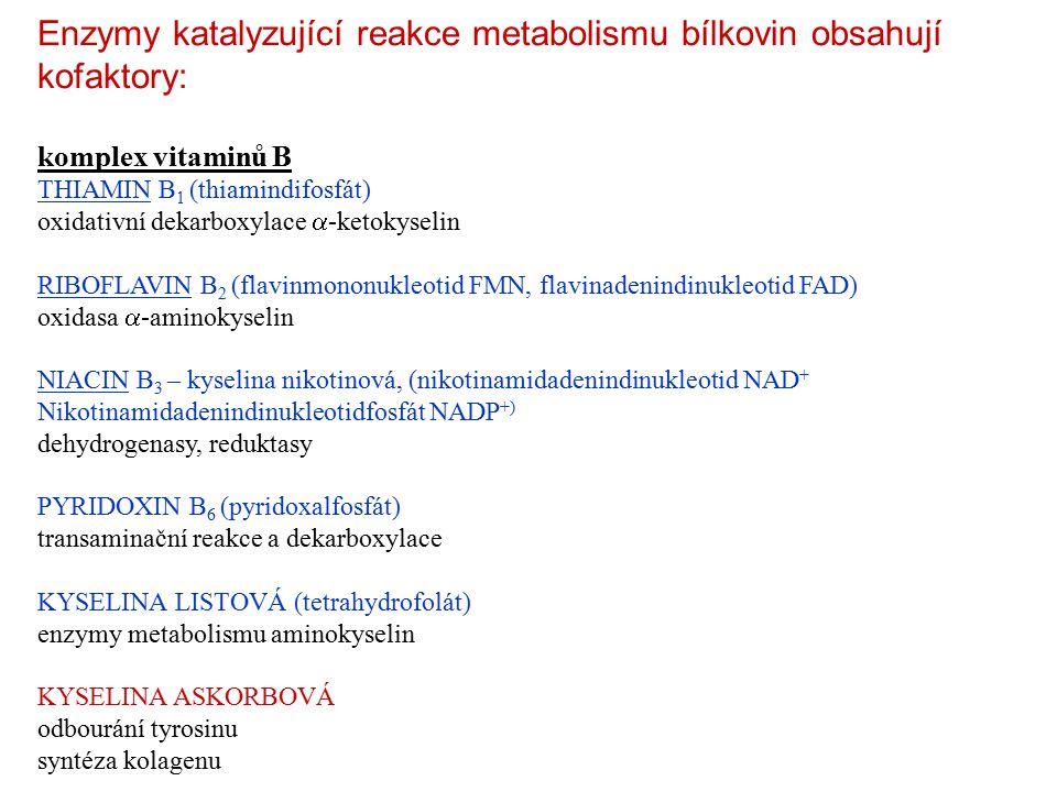 Enzymy katalyzující reakce metabolismu bílkovin obsahují kofaktory: